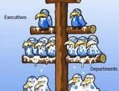 humor gráfico jerarquias